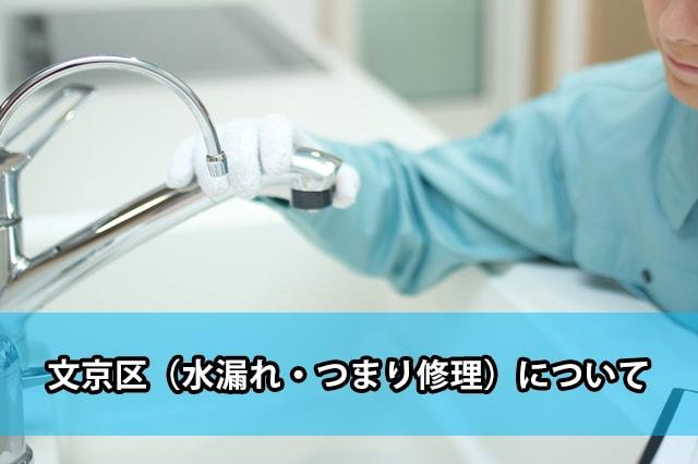 文京区の水漏れ・つまり