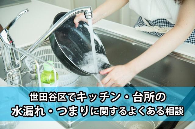 世田谷区の台所・キッチンの水漏れ・つまり