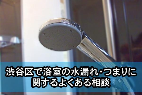 渋谷区で浴室の水漏れ・つまりに関するよくある相談