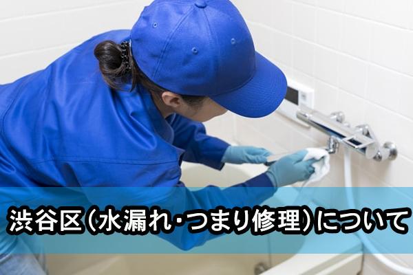 渋谷区(水漏れ・つまり修理)について