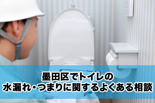 墨田区でトイレの水漏れ・つまりに関するよくある相談